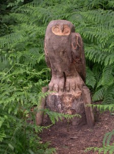 The owl of Owley Wood?